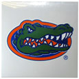 Florida Gators Vinyl Bling Decals