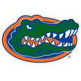 Florida Gators 8 inch Logo Magnets - Make sure everyone knows your are a Florida Gators fan with our big 8 inch Florida Gators logo magnets. These officially licensed magnets stick to any magnetic metal and our outdoor rated! Perfect for Florida Gators game day and everyday! Thank you for shopping with CrazedOutSports.com