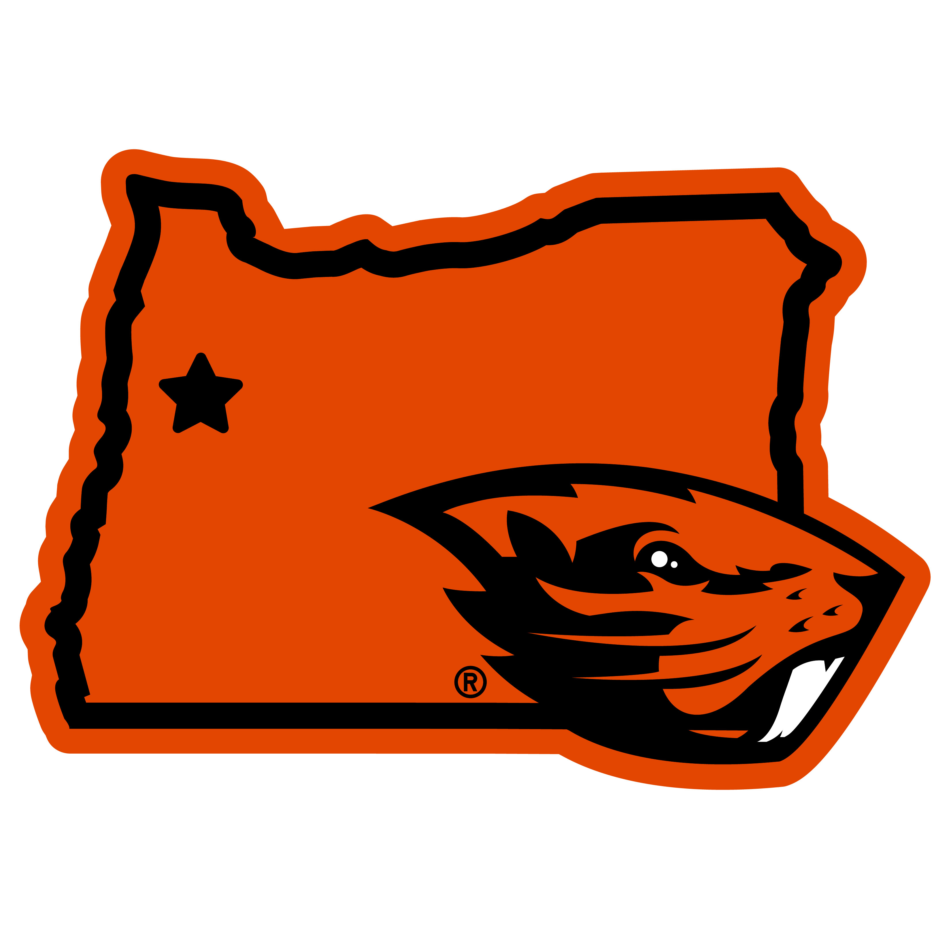 Oregon St. Beavers Home State 11 Inch Magnet - Whether you are caravaning to the game or having a tailgate party make sure you car is wearing its fan gear with our extra large, 11 inch Oregon St. Beavers home state magnets. These striking magnets can be easily placed on for game day and removed without he residue left by decals. The design features a bright state outline with the location of the team highlighted with a football and a large team logo.