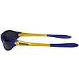 Minnesota Vikings Team Sunglasses