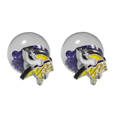Minnesota Vikings Front/Back Earrings