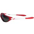 Detroit Red Wings® Team Sunglasses