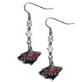 Minnesota Wild Crystal Dangle Earrings - NHL Minnesota Wild Crystal Dangle Earrings earrings are the perfect accessory for your game day outfit! The Minnesota Wild Crystal Dangle Earrings are approximately 1.5 inches long and feature an iridescent crystal bead and nickel free chrome Minnesota Wild charm on nickel free, hypoallergenic fishhook posts. Thank you for visiting CrazedOutSports