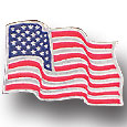 Collector Pin - American Flag