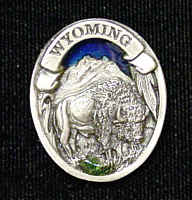 Pin - Wyoming Bison - Our fully cast and enameled Wyoming pin features exceptional detail with a hand enameled finish.