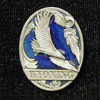 Pin - Wyoming Eagle - Our fully cast and enameled Wyoming pin features exceptional detail with a hand enameled finish.